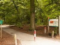 Rommestraat 13 in Zwolle 8015 AR