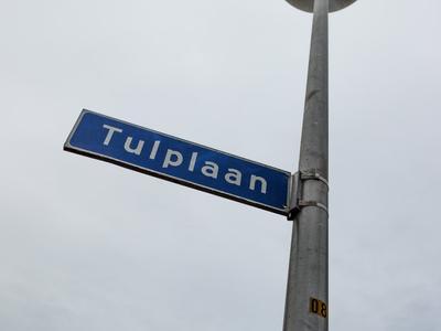 Tulplaan 1 in Noorden 2431 ZB