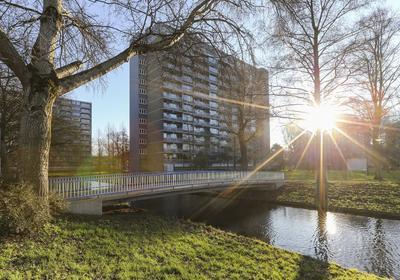 Griegplein 146 in Schiedam 3122 VN