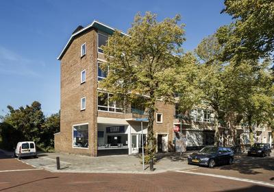 Ruygenhoeklaan 15 Ii in Utrecht 3523 HJ