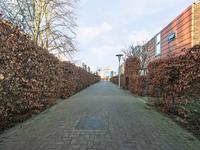 Blaaszegge 13 in Zwolle 8043 LA