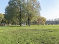Smitshoek 112 in Barendrecht 2993 BJ