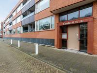 Schimmelpenninckstraat 153 in Katwijk 2221 HN
