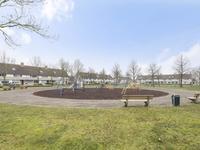 Grauwe Gans 44 in Bergen Op Zoom 4617 KE