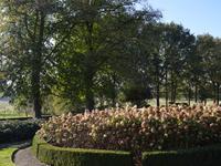 Burgemeester Van Der Borchstraat 29 in Holten 7451 CG