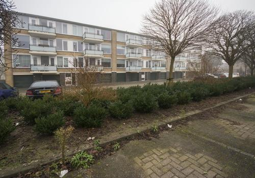 Van Anrooystraat 309 in Ridderkerk 2983 VJ