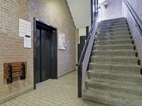 Ockingahiem 61 in Franeker 8801 KR
