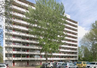 Buizerd 63 in Heerenveen 8446 KL