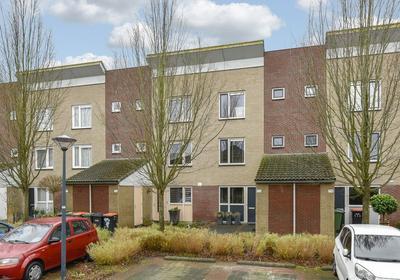 John Raedeckerhof 175 in Hoorn 1628 ZD