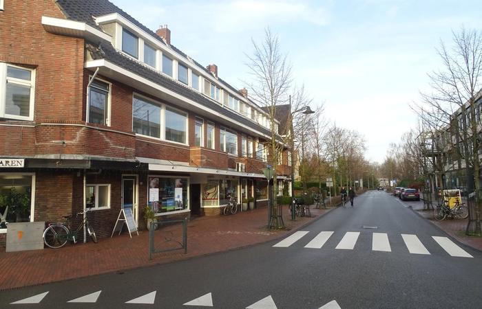 Molenweg 2 A in Haren Gn 9751 AH