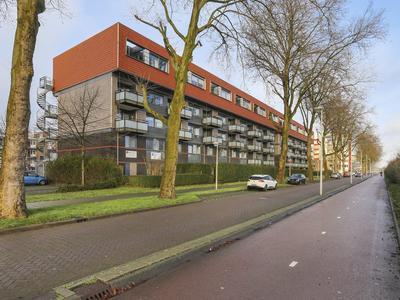 Albert Van Raalteplein 100 in Schiedam 3122 GL