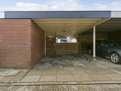 Kanariesprenk 413 in Vlissingen 4386 DP