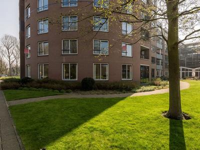Berberisweg 210 in Rotterdam 3053 PJ