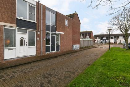 Kanariesprenk 193 in Vlissingen 4386 DK