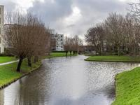 Dreeslaan 141 in Naaldwijk 2672 DL