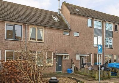 Mackayware 88 in Zwolle 8014 RX
