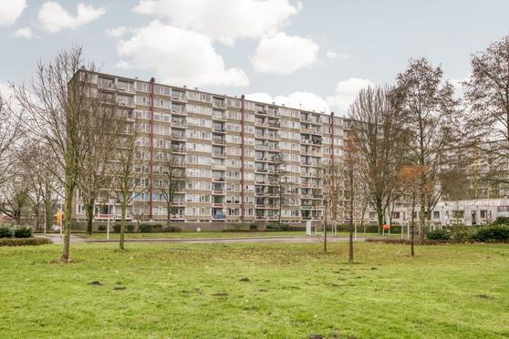 Van Goudoeverstraat 185 in Gorinchem 4204 XH