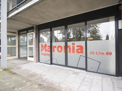 Maronia 47 in Hillegom 2182 RK