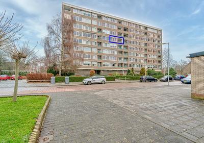 Jan Van Goyenstraat 78 in Alkmaar 1816 EG