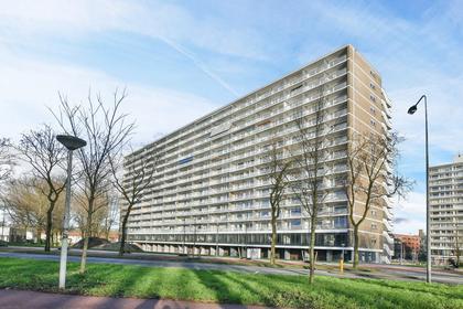 Burgemeester Hogguerstraat 1155 in Amsterdam 1064 EJ
