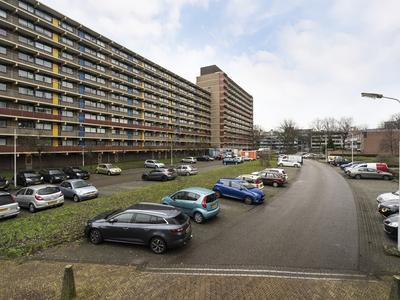 Laveibos 195 in Zoetermeer 2715 RL