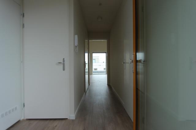 Zwedenhof 32