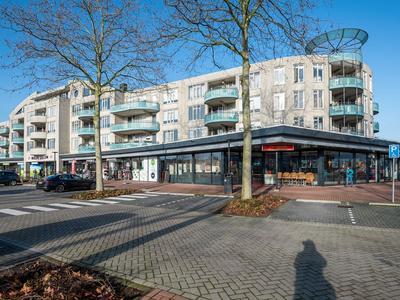 Dr. H.B. Wiardi Beckmanplein 119 in Gorinchem 4207 NA