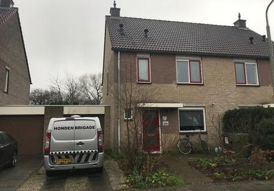 Zenegroen 146 in Leeuwarden 8935 KN