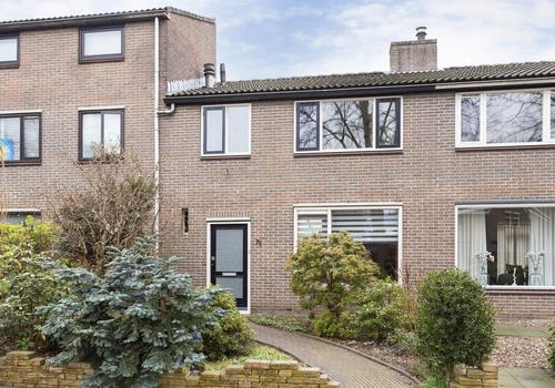 Silene 78 in Kampen 8265 GX