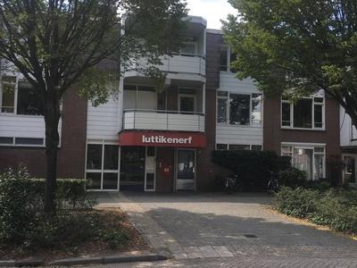 Luttikenerf 14 in Ede 6713 DZ