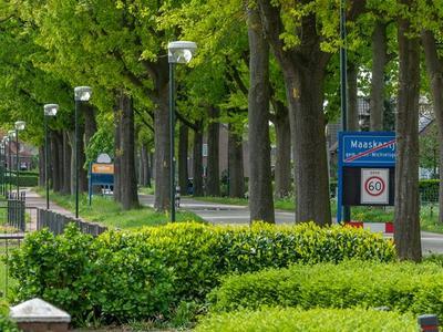 Hoogstraat 64 in Sint-Michielsgestel 5271 XB