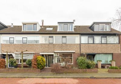 'T Roode Hart 19 in Velsen-Zuid 1981 AH