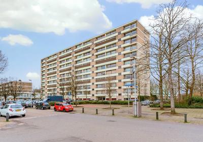 Livingstonelaan 160 in Utrecht 3526 HR