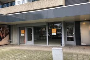 Schapendries 2 in Oosterhout 4901 HH