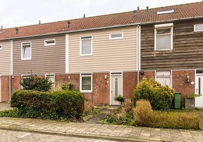 Steunbeer 8 in Middelburg 4336 JW