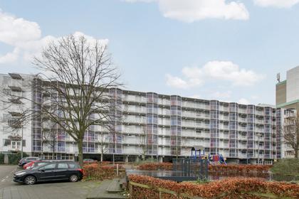 Papegaaistraat 156 in Rotterdam 3061 CW