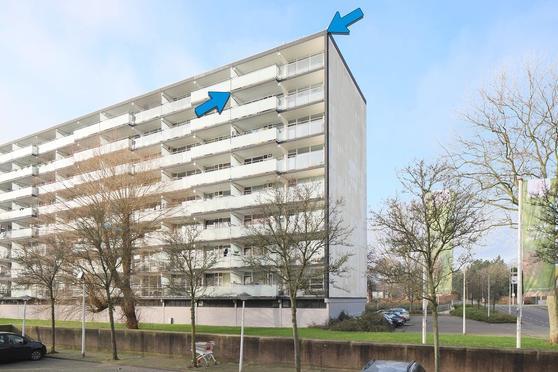 Arendshorst 166 in Leiden 2317 CZ