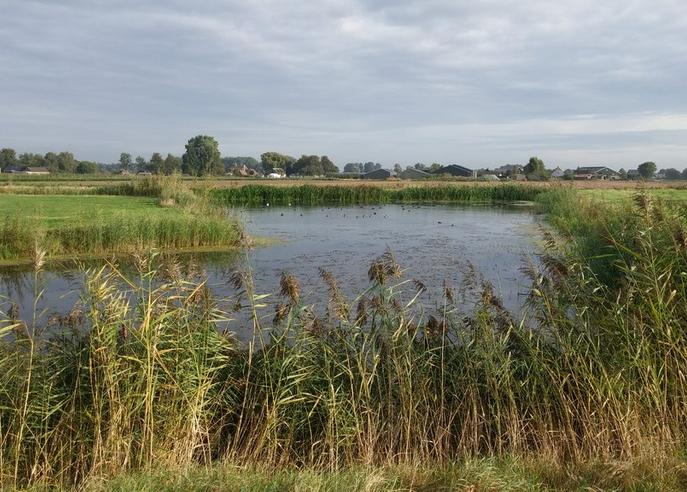 Kraaiveld 1 in Woudrichem 4285 WM