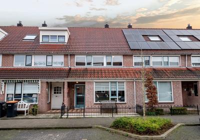 Ceder 70 in Hoorn 1628 MX