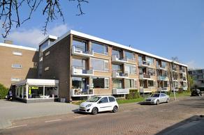 Olijflaan 79 in Rotterdam 3053 WJ