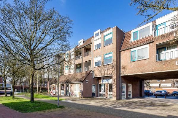Schoonhout 167 in Etten-Leur 4872 MC