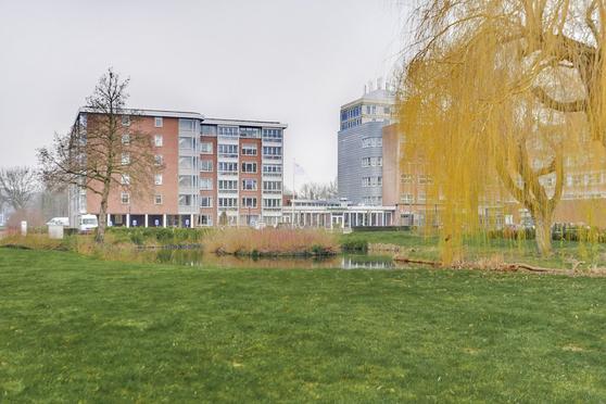 Plantageweg 85 in Zwijndrecht 3333 GZ