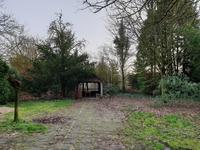 Een diepe achtertuin gelegen op het oosten met groot terras, gazon en diverse bomen.
