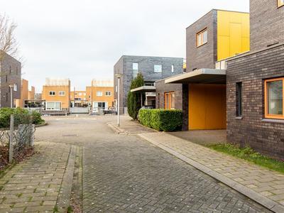 Fokkeboom 40 in Almere 1319 BK