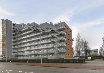 De Hoven 77 in Heemskerk 1965 BG