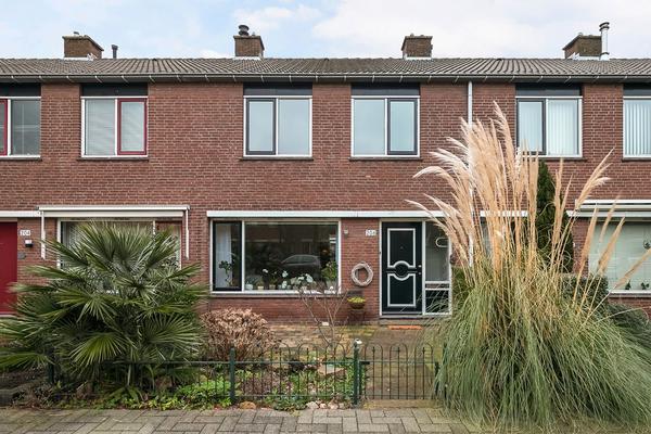 Dennekruid 206 in Rotterdam 3068 SM