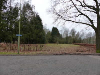 Ringlaan in Eerbeek 6961 KJ