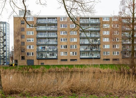 Argostraat 240 in Alphen Aan Den Rijn 2402 CC
