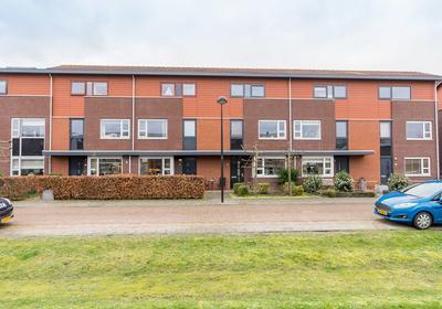 Lange Rille 8 in Kampen 8266 JV