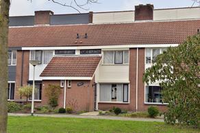 Dixieland 7 in Bergen Op Zoom 4614 XN